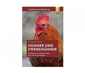 Hühner und Zwerghühner